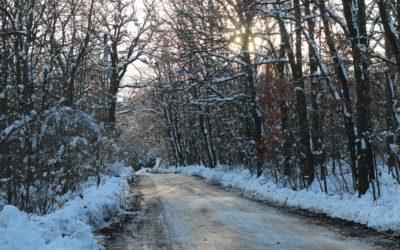 SZEZONÁLIS ÉLET – tél = raktározás